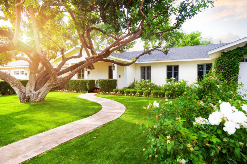 home with large tree and well kept lawn