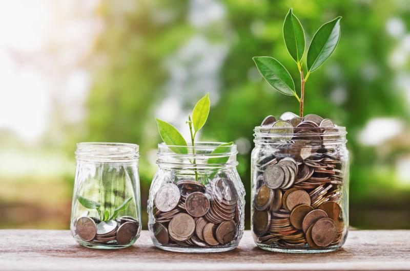plants growing in jars of coins