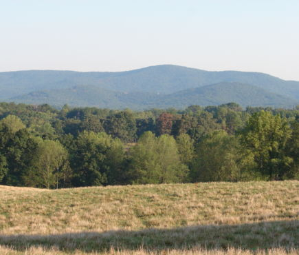 Hills of Habersham